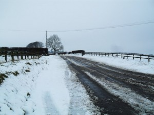 Wet and Snowy Road