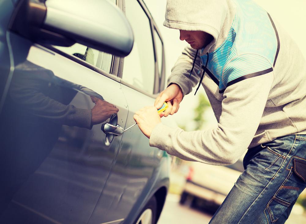 vehicle theft